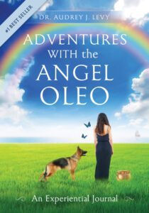 The Adventures of the Angel Oleo book cover 2