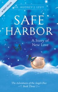 """""""Safe Harbor"""" book cover"""