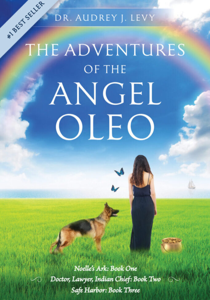 The Adventures of the Angel Oleo book cover